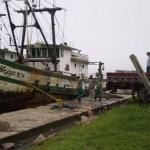 Barco aprendido - pesca de arrasto de parelha